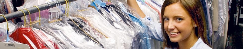 Wash Fold Services